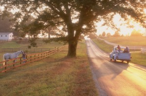 1996 --- Farmers --- Image by © John Henley/CORBIS