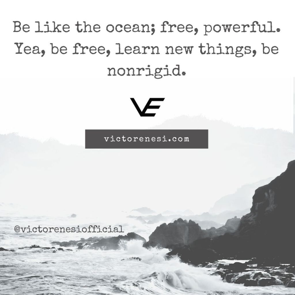 Be like the ocean; free, powerful. Yea, be free, learn new things, be nonrigid.